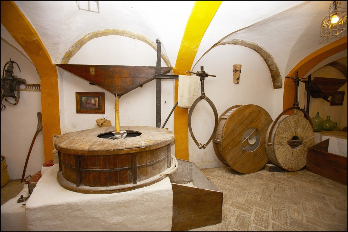 Museo Molino de Abajo